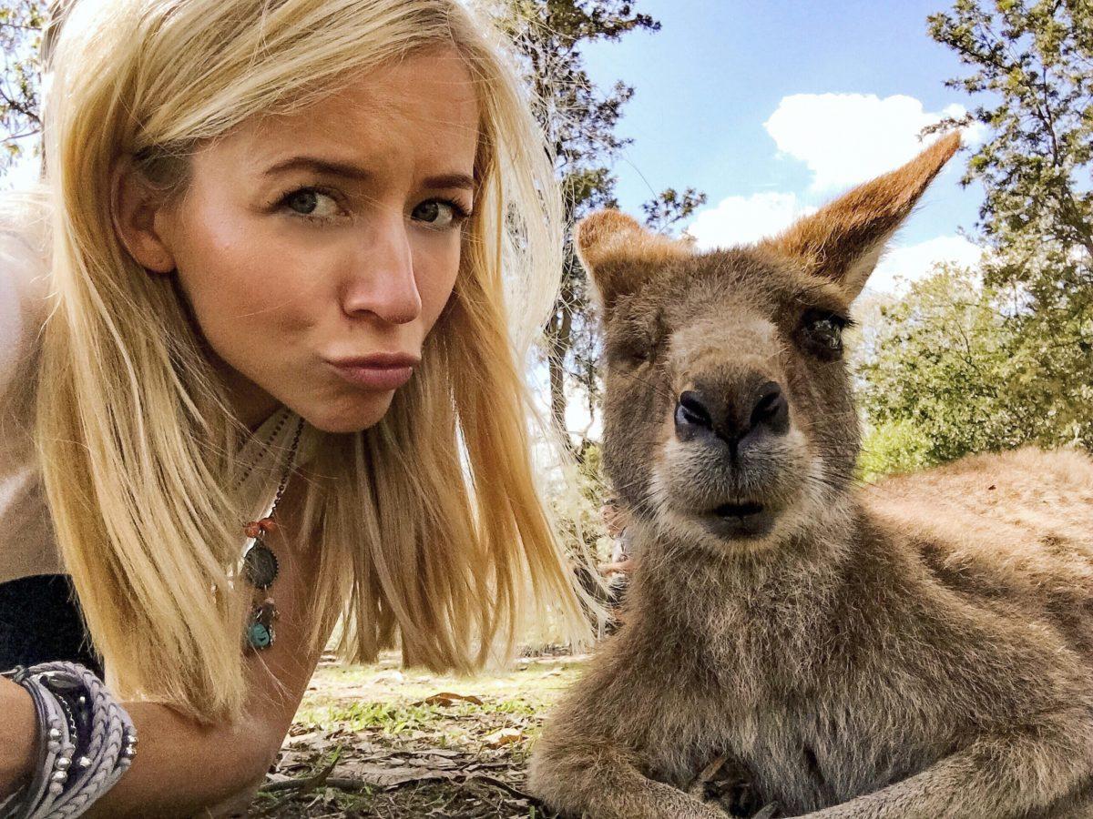Kangaroo Selfie & Koala Hug